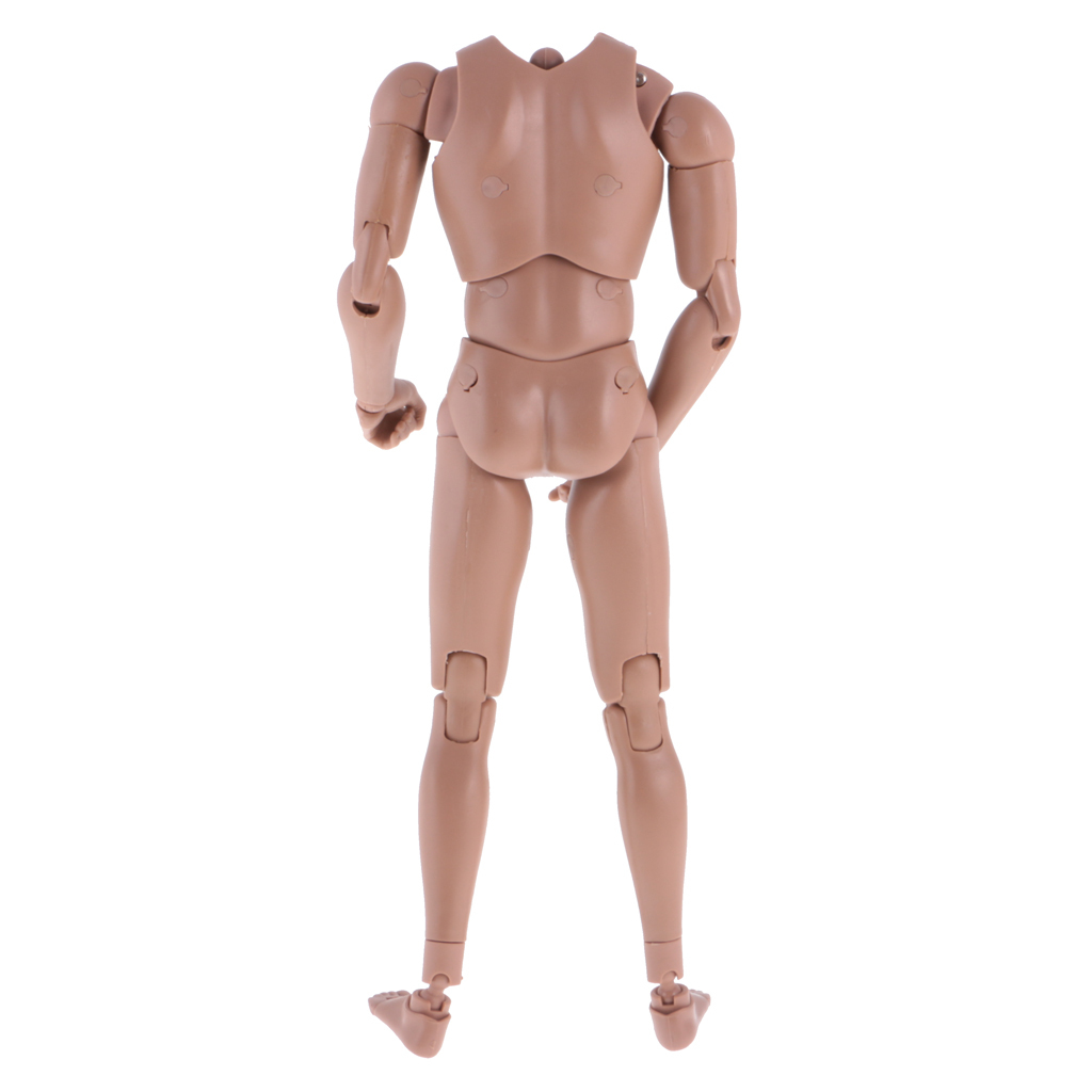 1//6th Action Figure Muscular Muscle Male Nude Body for Hot Toys TTM18 TTM19 Head