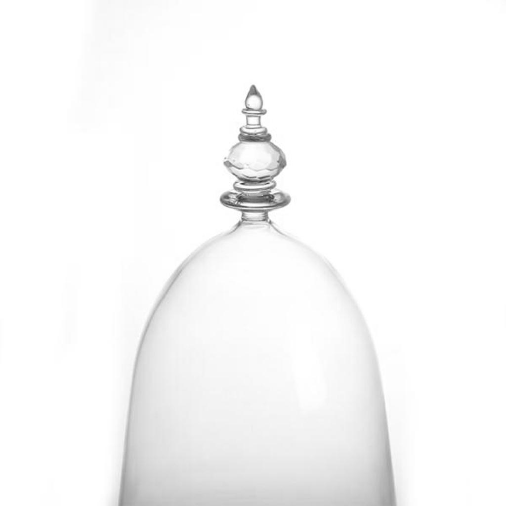 Glass ClocheBell Jar DomeWood Base Transparent ToppedChristmas Decor