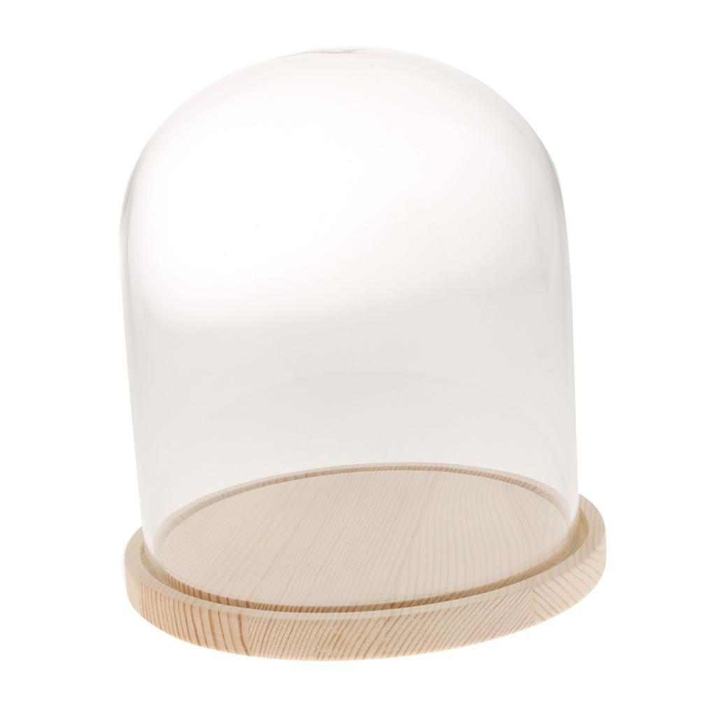Glass Dome Cover with Wooden Base for Party Festival Wedding DIY Decor