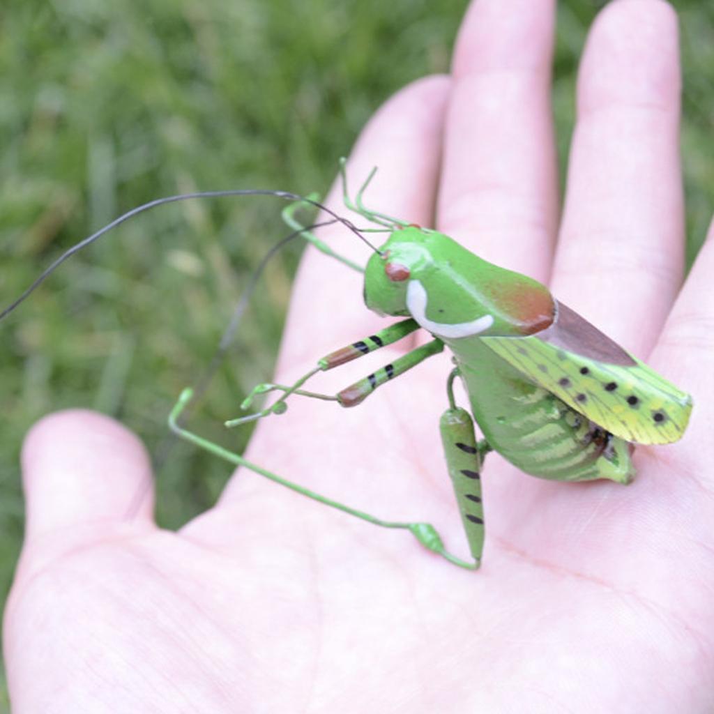 Realistische Insekten Insektenmagnet Dekomagnet Kühlschrankmagnet