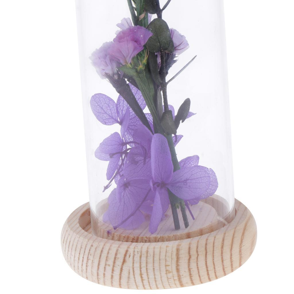 Display Glass Cover Flower Cloche Jar Dome Decor With Wooden Base Tray Case