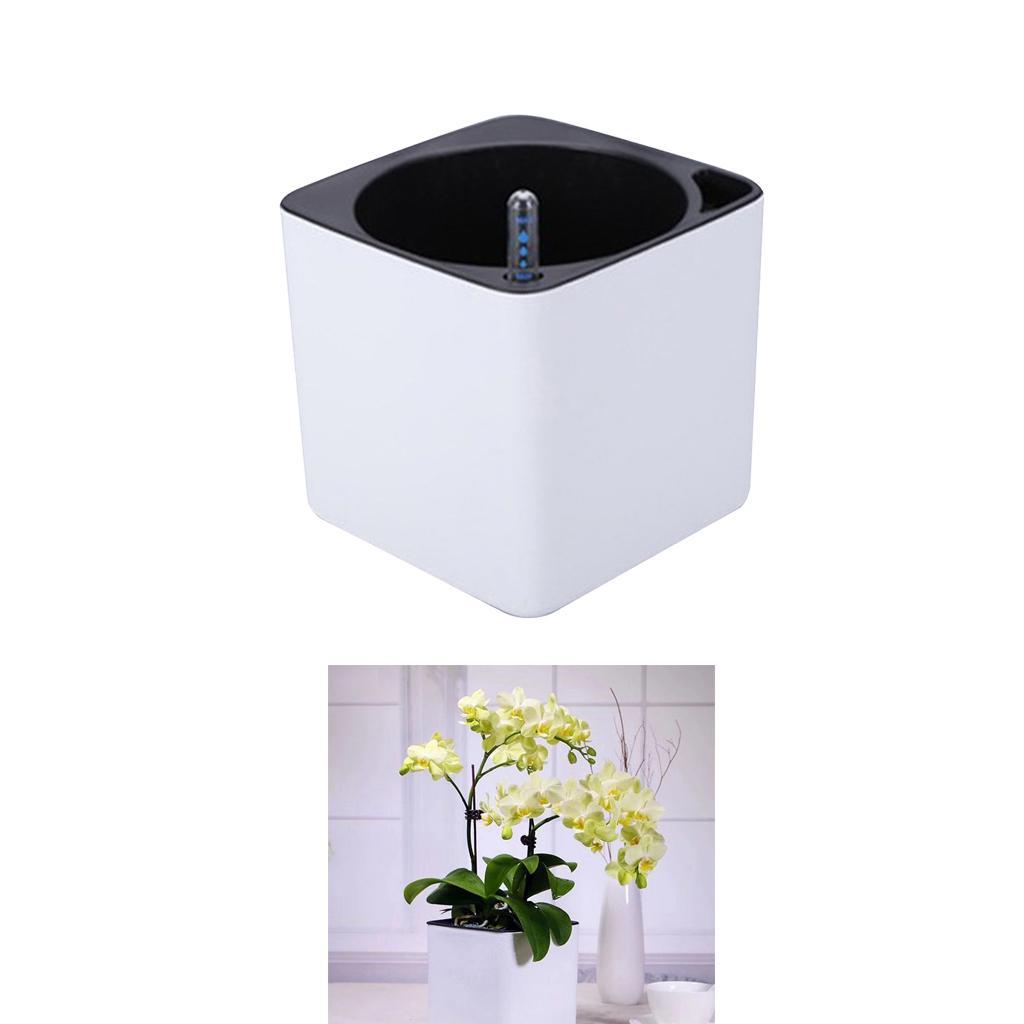 Decorative Plastic Self Watering Planter Pot with Water Level Indicator