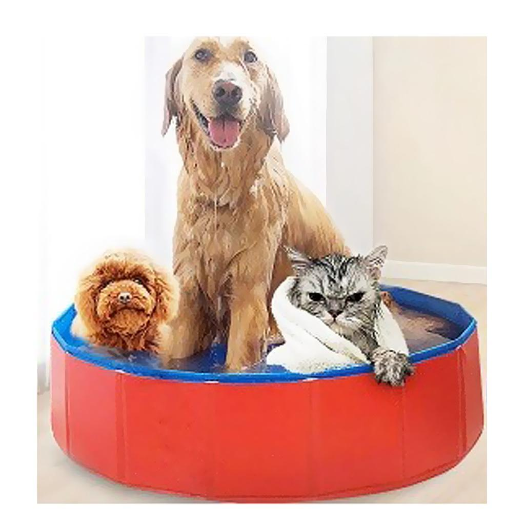 Pet Cat Dog Swimming Pool Indoor Outdoor Bathing Foldable Inflate Dia 100//30cm
