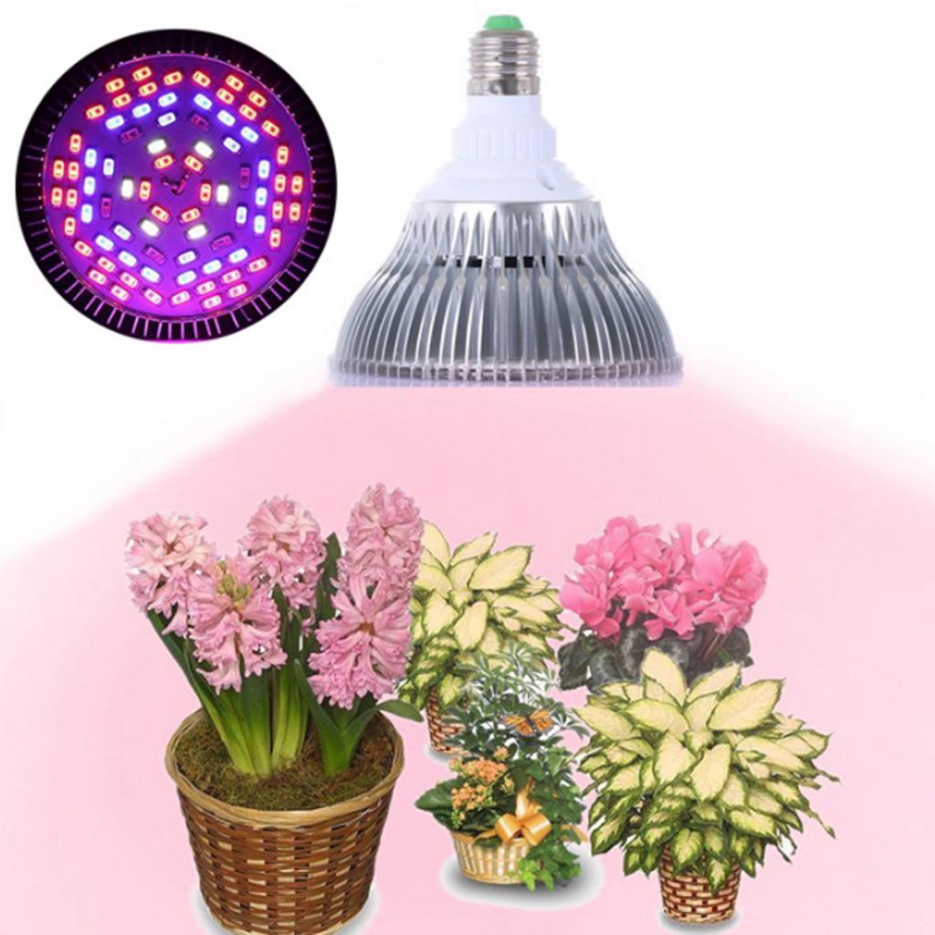 Idéal Lampe De Sur Jardin Détails CroissanceHorticole Intérieur Led Pour 4A3LcRq5j
