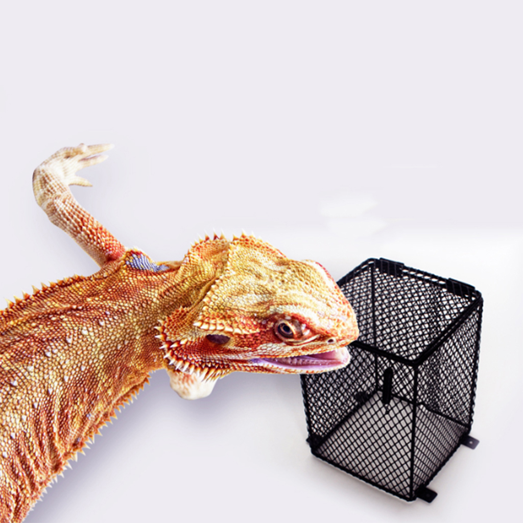 Reptile Amphibians Heat Lamp Light Bulb Mesh Cage