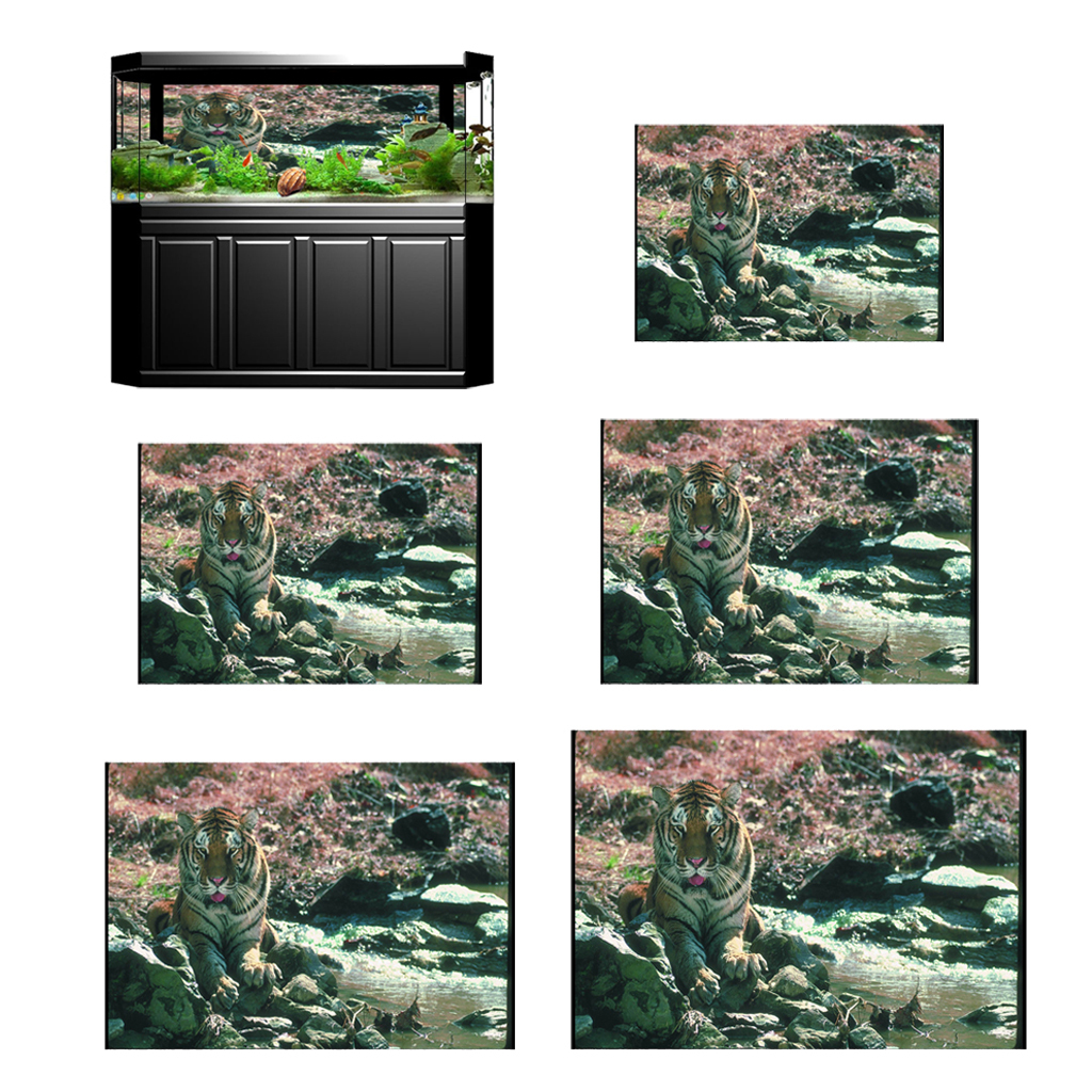 3D Aquarium Wallpaper Landscape Poster Fish Tank Vivarium