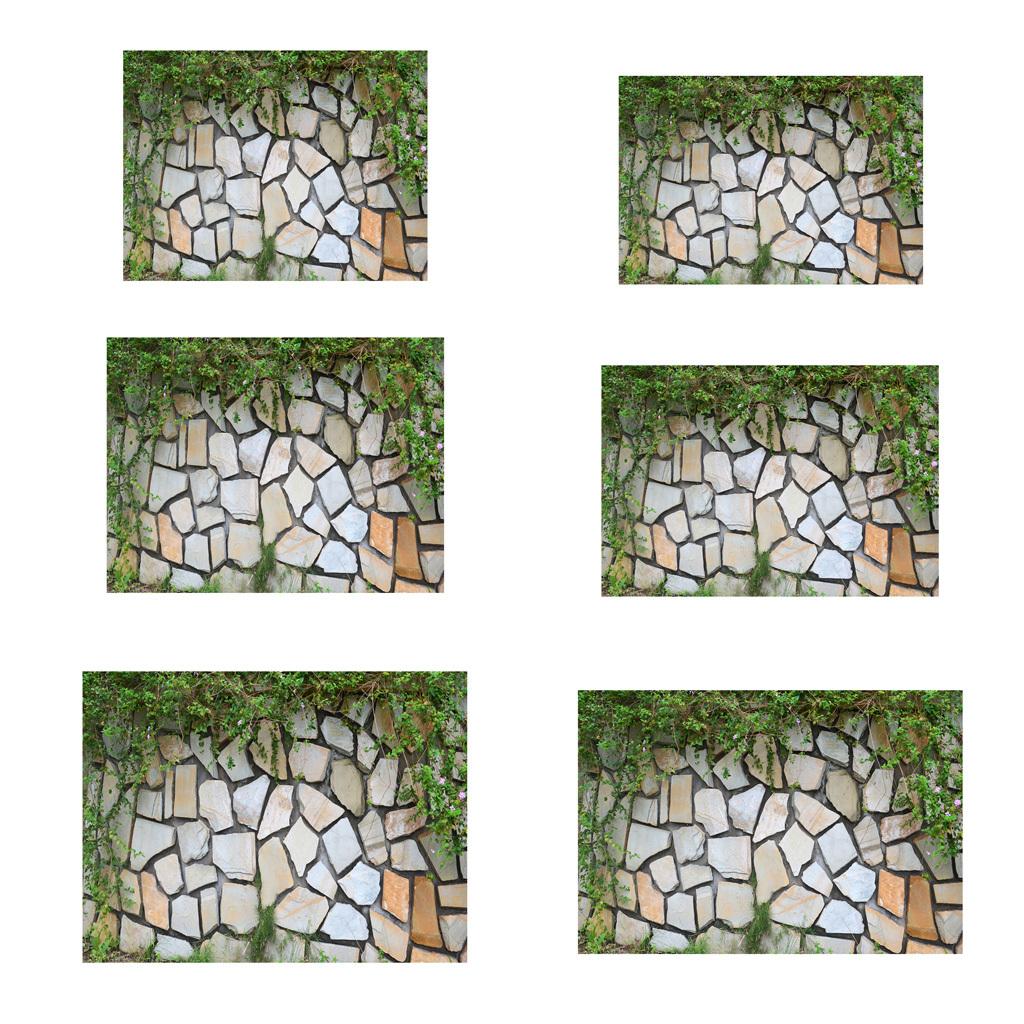 Adesivo-di-pesce-acquario-Poster-di-sfondo-per-serbatoio-Decorazione miniatura 9