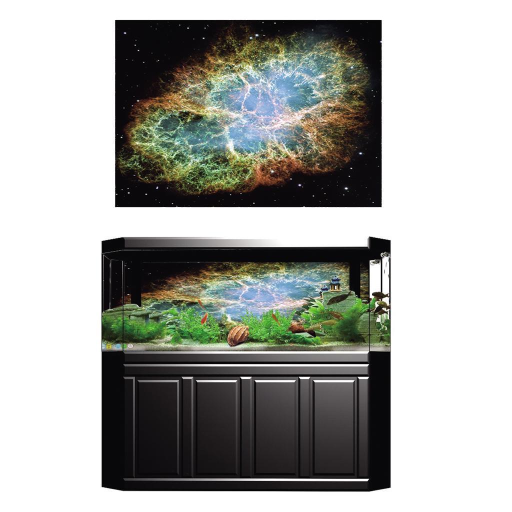 Poster-di-pesci-acquario-Poster-di-sfondo-3D-per-decorazione-acquario miniatura 5