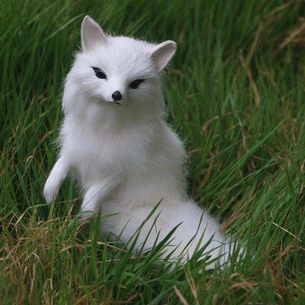 Lovely Simulated Animal Fox Realistic Plush Toy Soft  White Children Gift