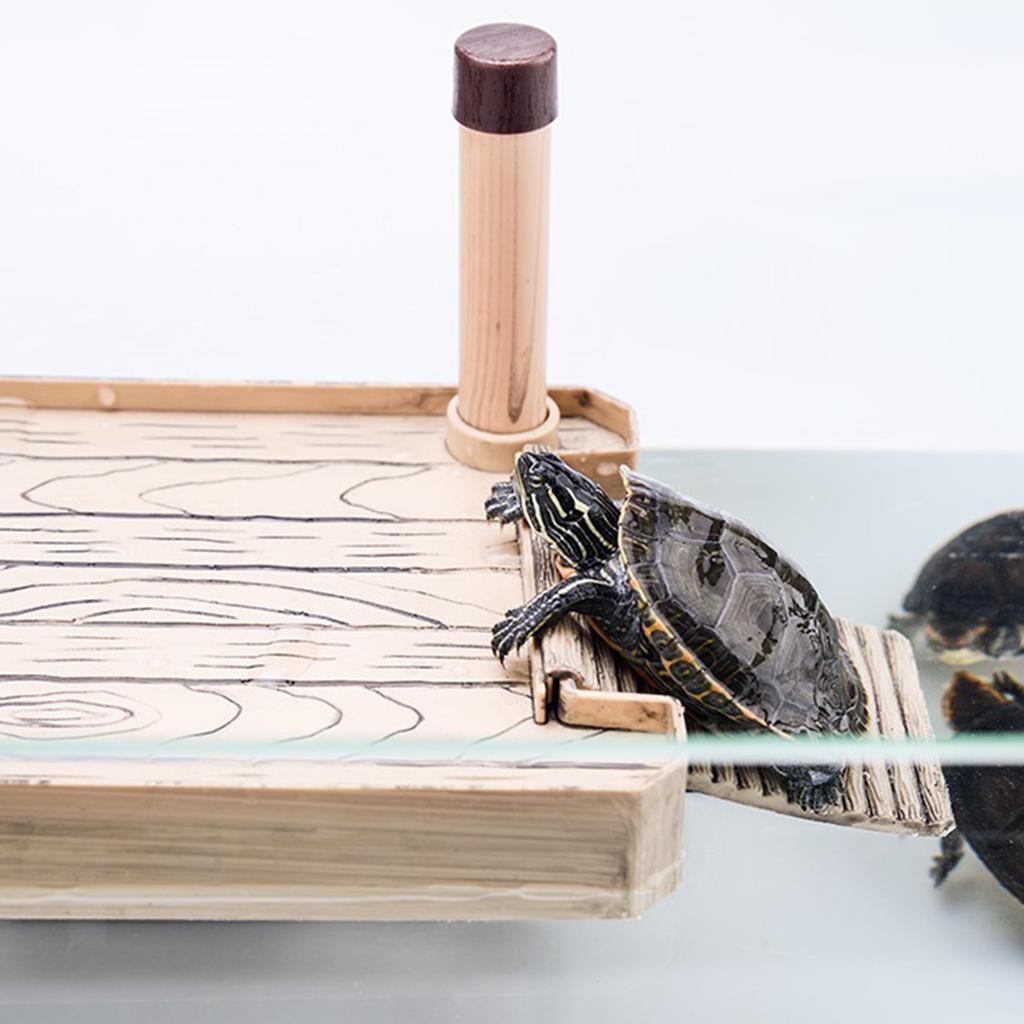 Piattaforma-di-Rettile-Climbing-Terrarium-Platform-Turtle-for-Aquarium miniatura 4