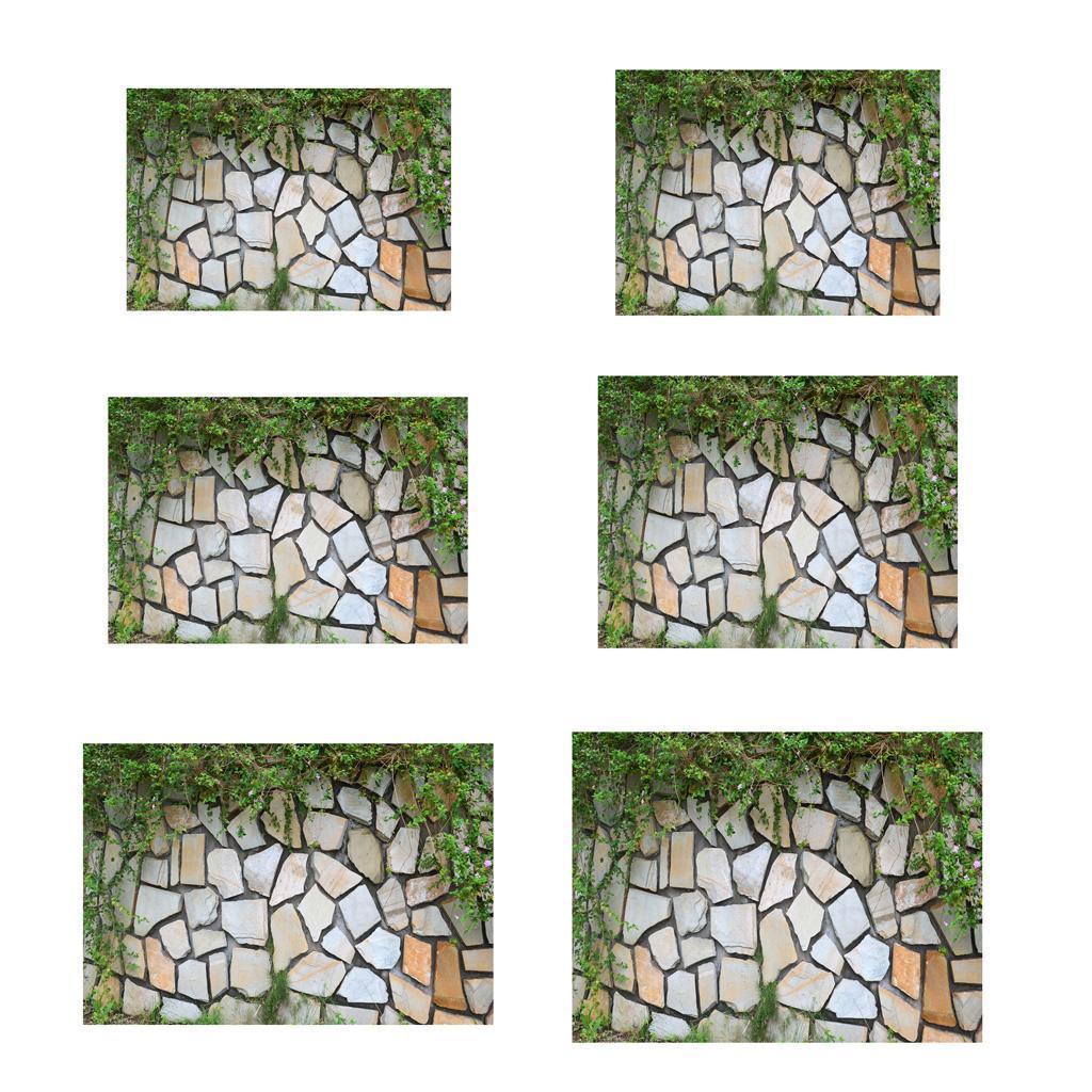 Adesivo-di-pesce-acquario-Poster-di-sfondo-per-serbatoio-Decorazione miniatura 19