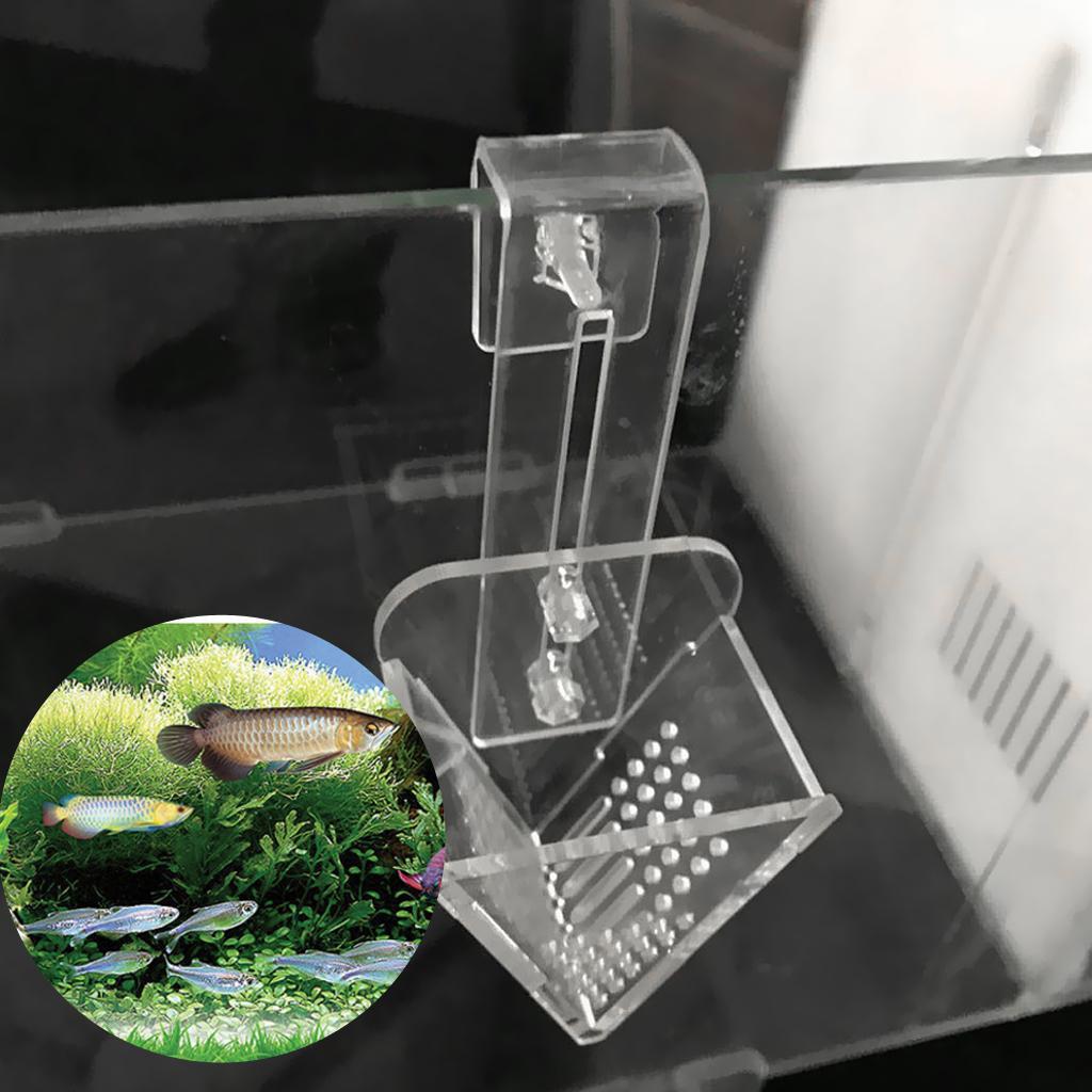 Crystal Feeding V-Shape Plant Cup Fish Feeder Brine Shrimp Live Red Worm
