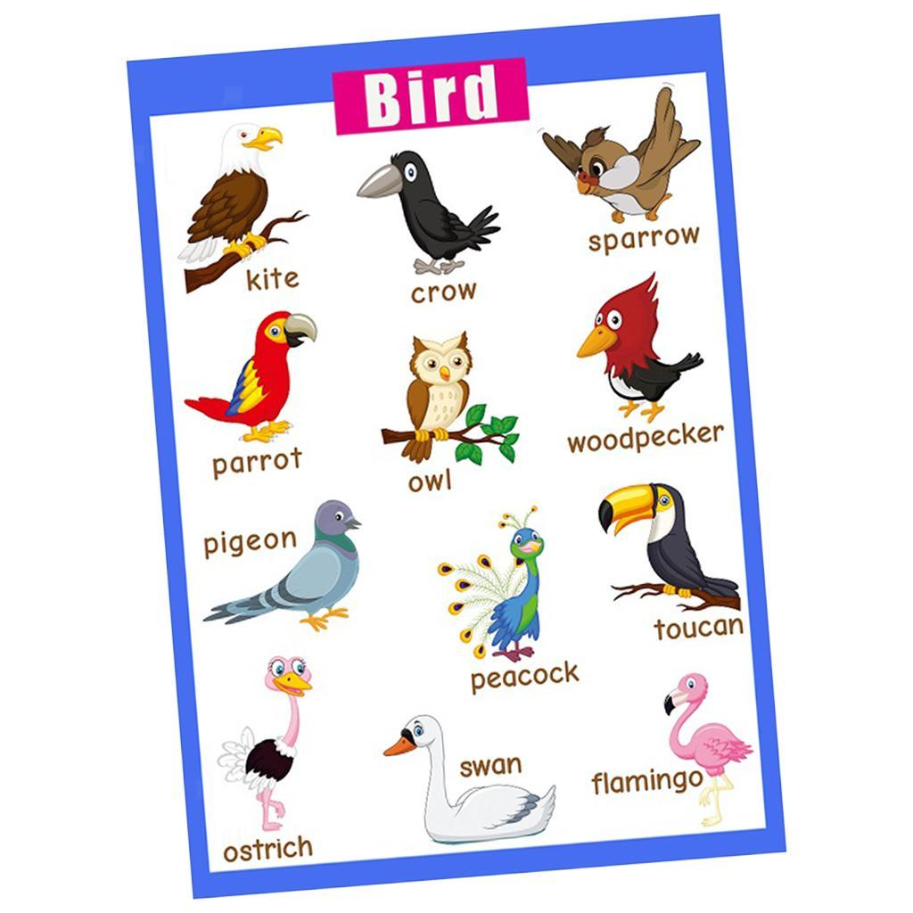 Toddlers-Kids-Fun-Early-Learning-Educational-Posters-Chart-for-Preschoolers thumbnail 25