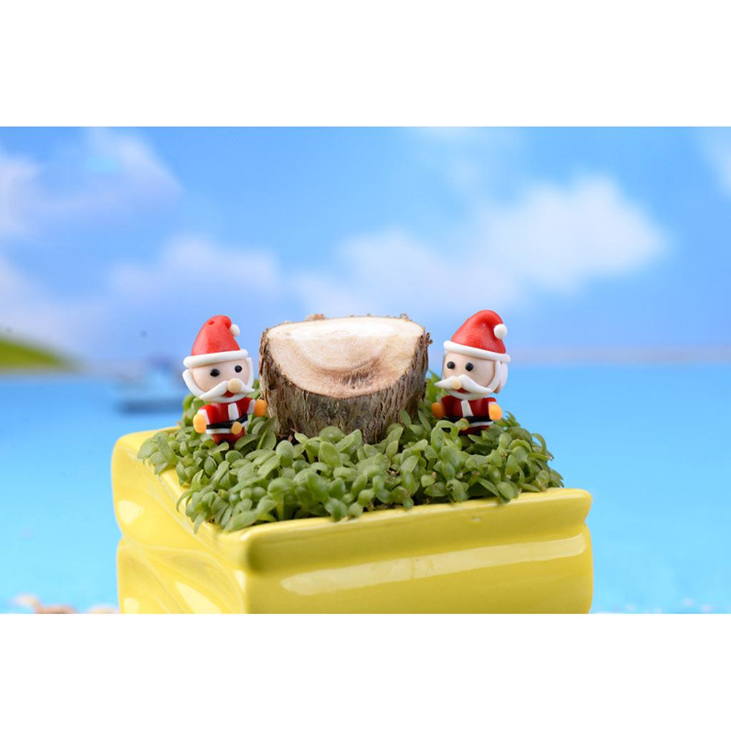 Christmas Decoration Miniature Pot Fairy Dollhouse Terrarium Bonsai Wedding Gift