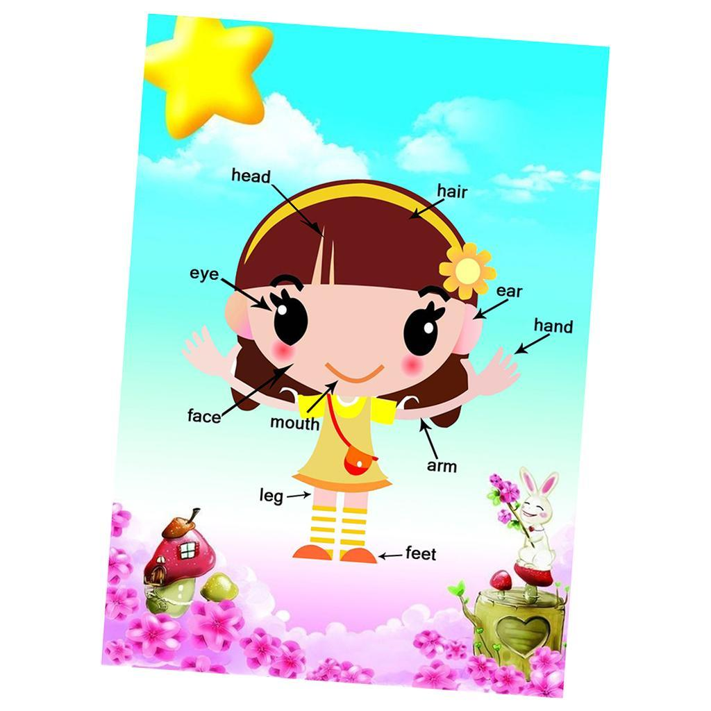 Toddlers-Kids-Fun-Early-Learning-Educational-Posters-Chart-for-Preschoolers thumbnail 29