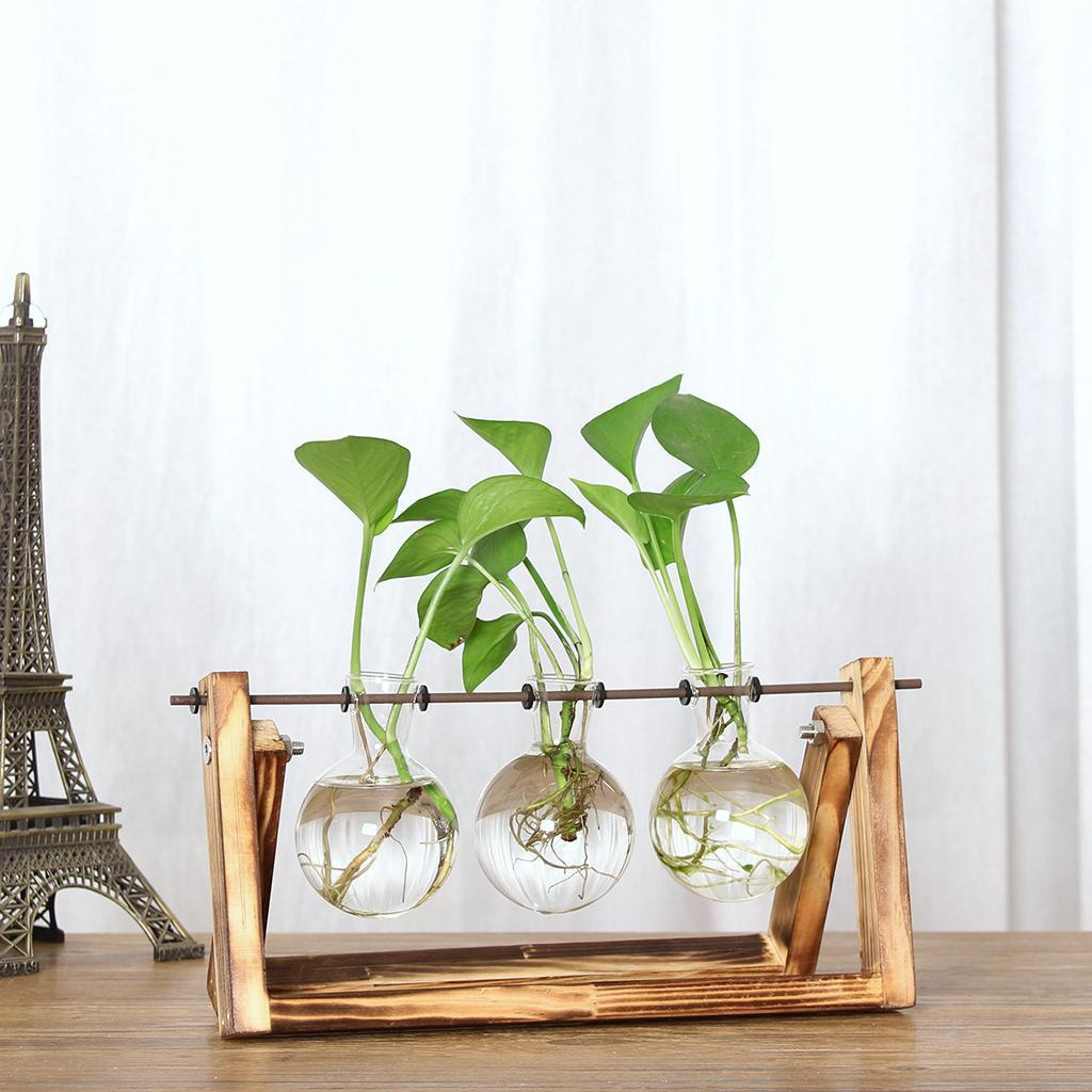 Tabletop-Hydroponic-Flower-Vase-Stands-Decorative-Wooden-Tray-with-1-2-3-Beakers thumbnail 104