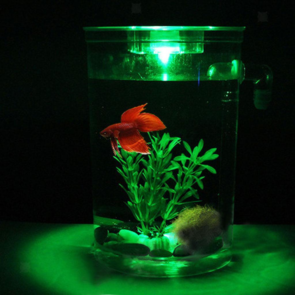 Decorative LED Fish Tank Small Aquarium Desktop Kids ...