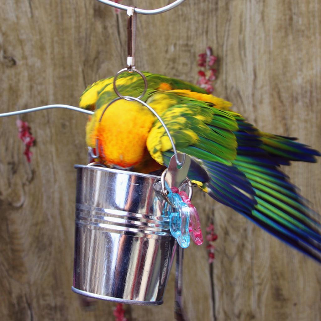 Alimentatore-per-gabbie-per-uccelli-Giocattoli-pendenti-per-pappagallo-ara miniatura 8