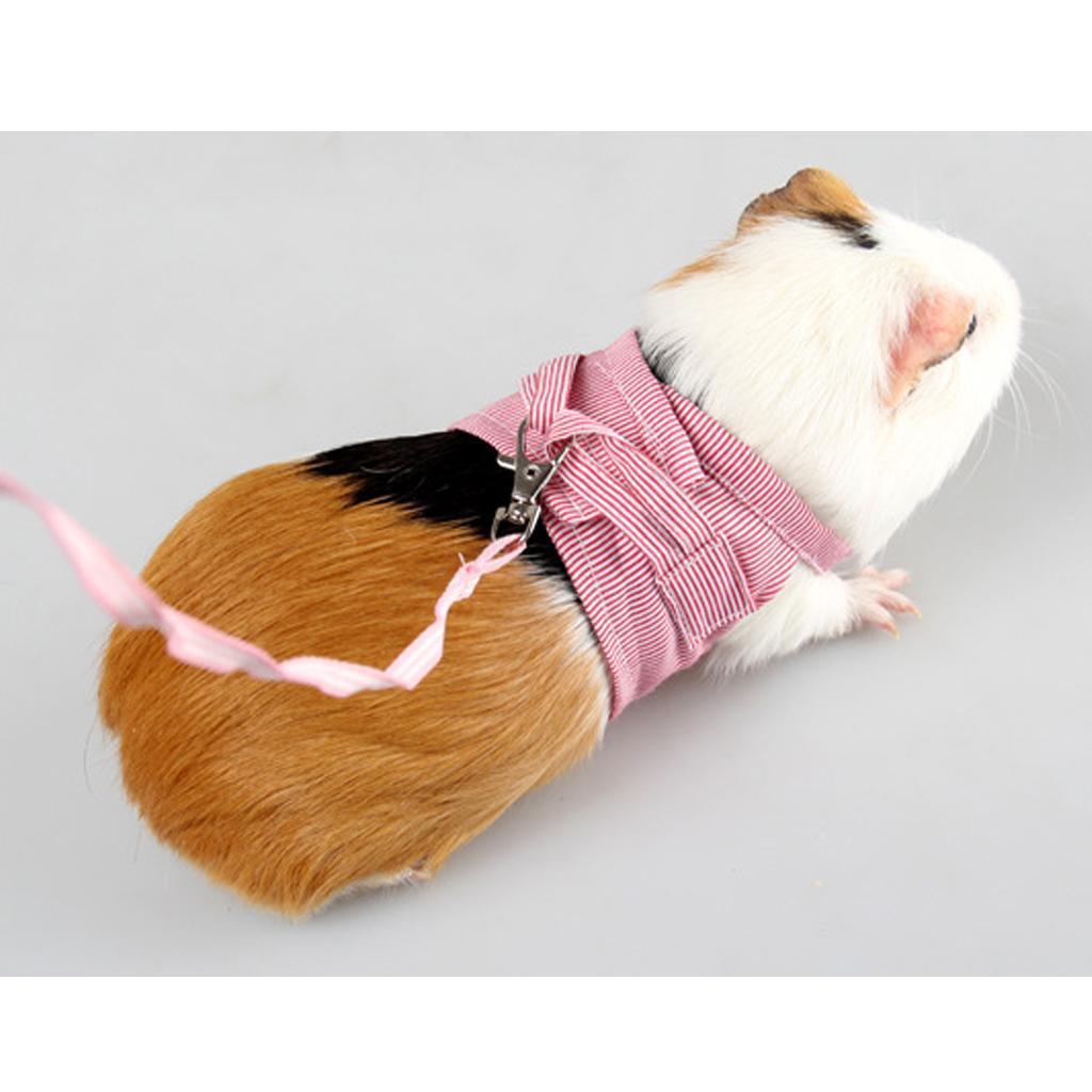 Rabbit-Walking-Harness-Leash-Pet-Puppies-Hamster-Leash-Vest-Traction-Rope thumbnail 4