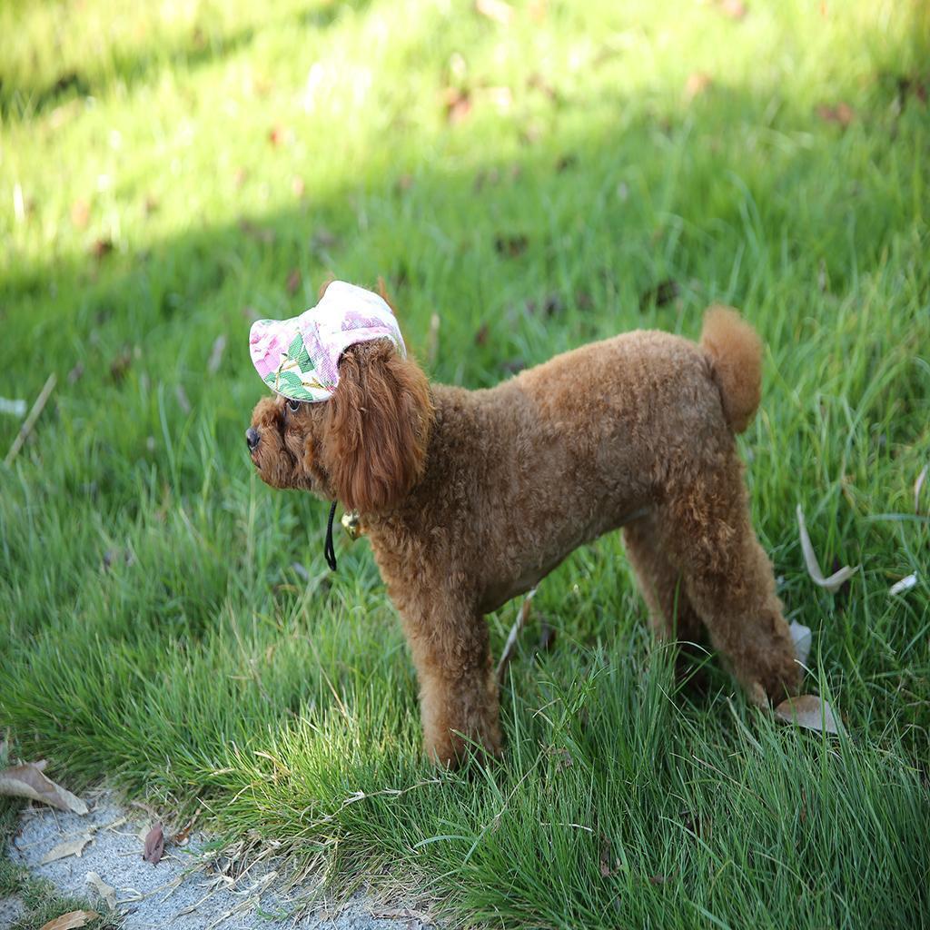 Pet-Dog-Puppy-Baseball-Visor-Hat-Peaked-Cap-Sunbonnet-Outdoor-Topee-Summer-PICK thumbnail 3