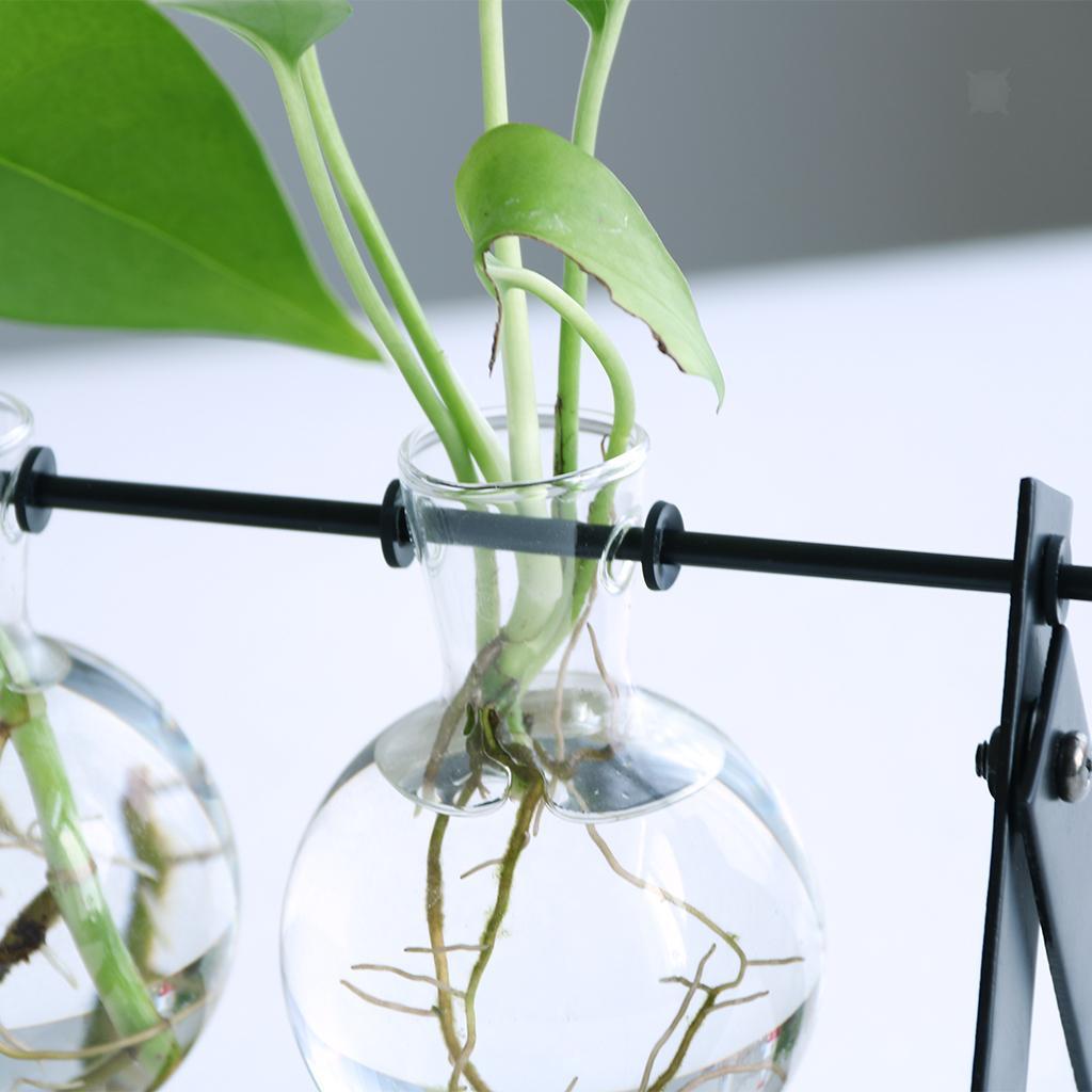 Vase-Boule-Suspension-de-plantes-en-verre-Container-a-Fleurs-Maison-Jardin-Decor miniature 5