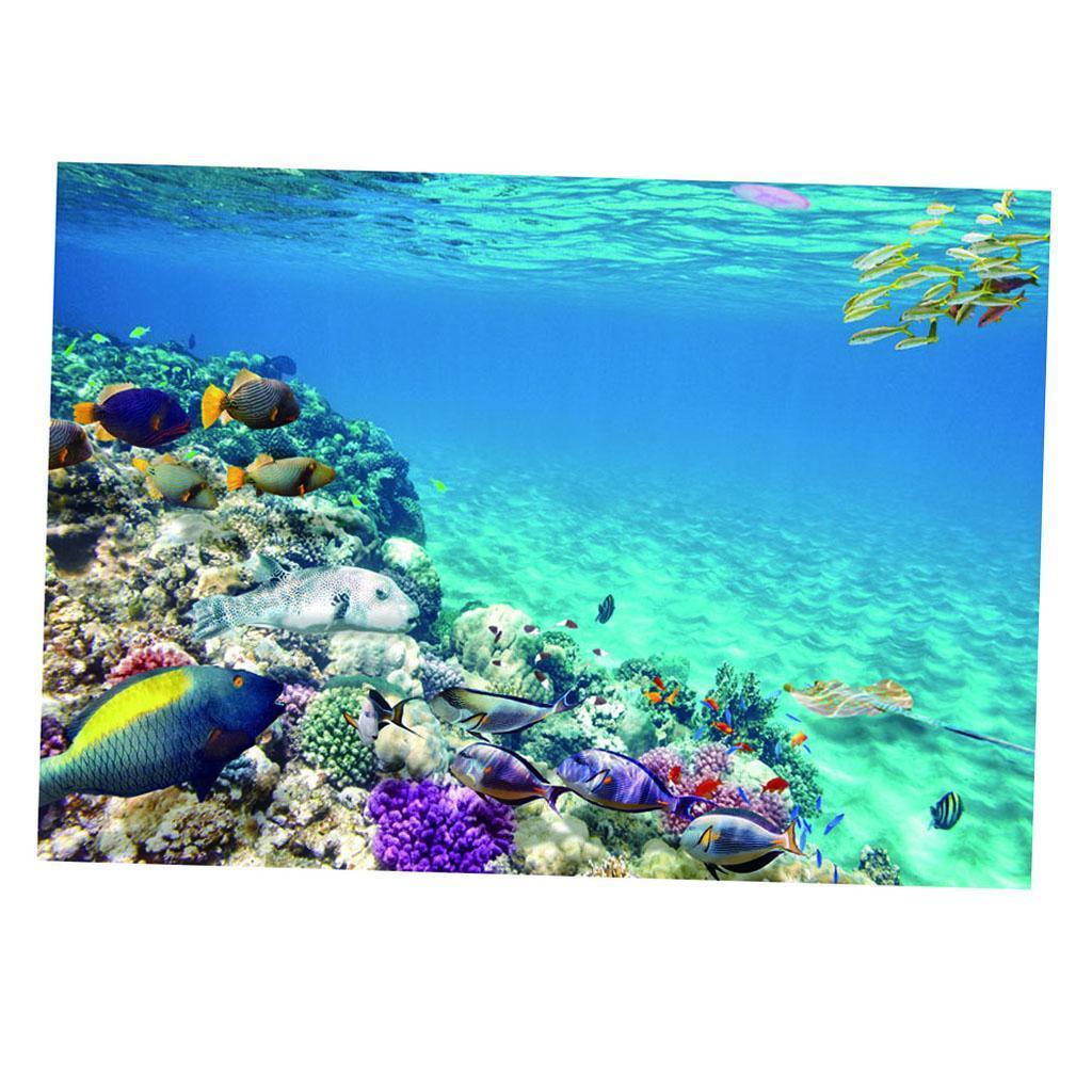 Sfondo-Stampa-Adesivi-Monocromatici-Per-Acquario-Serbatoio-da-Pesca-in-PVC miniatura 21