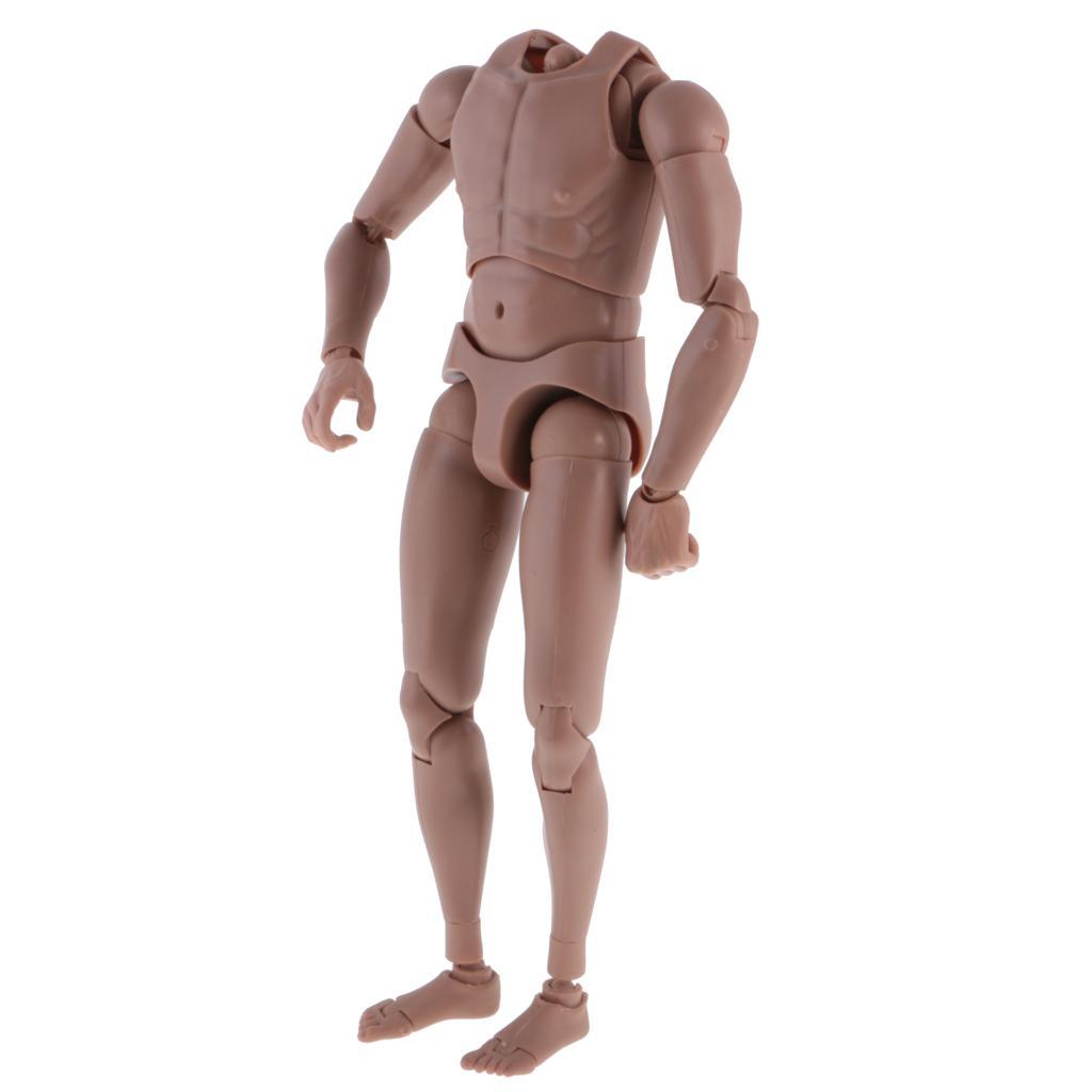 1-6th-Action-Figure-Muscular-Muscle-Male-Nude-Body-for-Hot-Toys-TTM18-TTM19-Head thumbnail 22